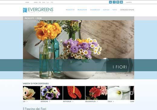 evergreens copertina